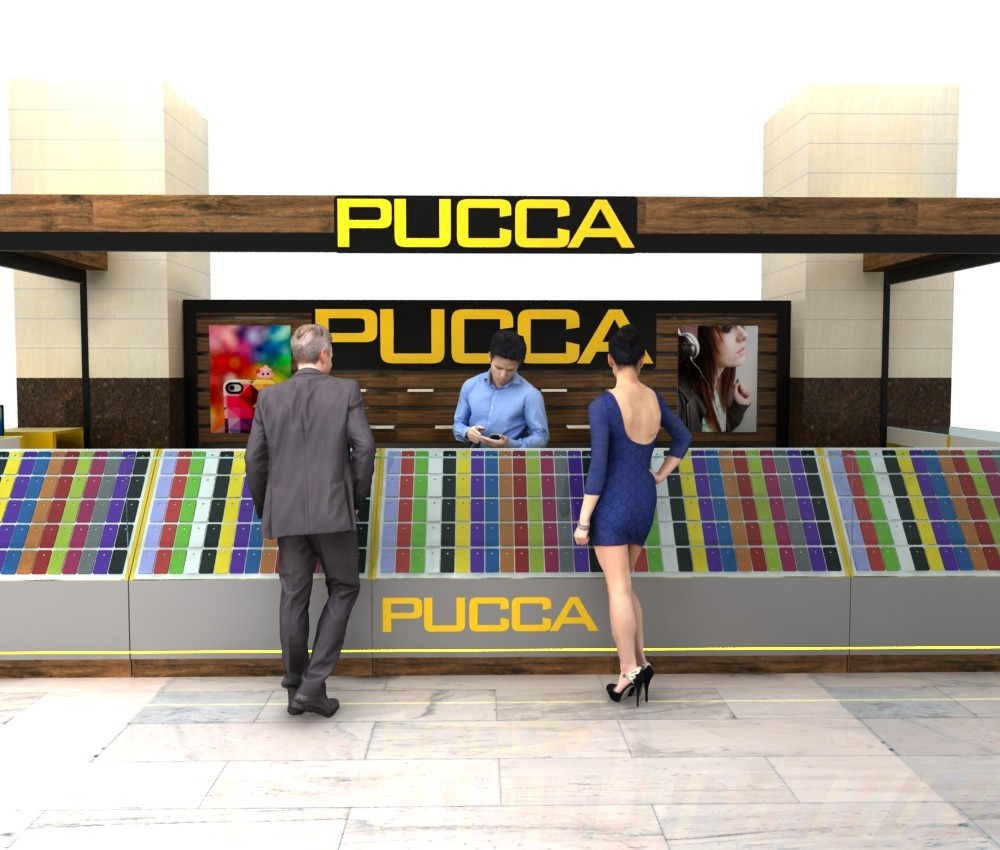 pucca gsm kiosk (2)